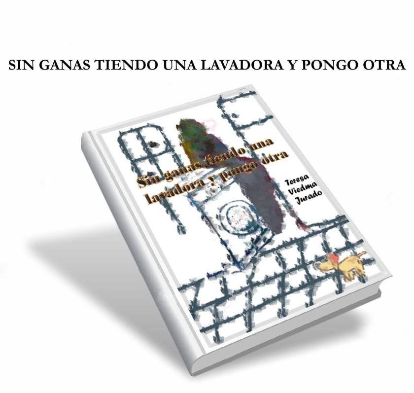 SIN GANAS TIENDO UNA LAVADORA Y PONGO OTRA